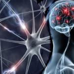 Основы суицидологии в общемедицинской практике