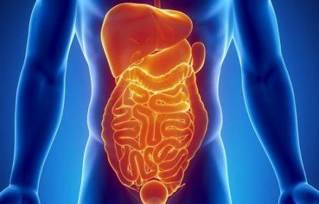 Хирургическая тактика при травмах органов брюшной полости