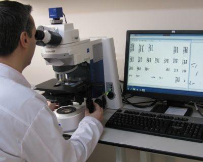 Геном человека: Цитогенетика