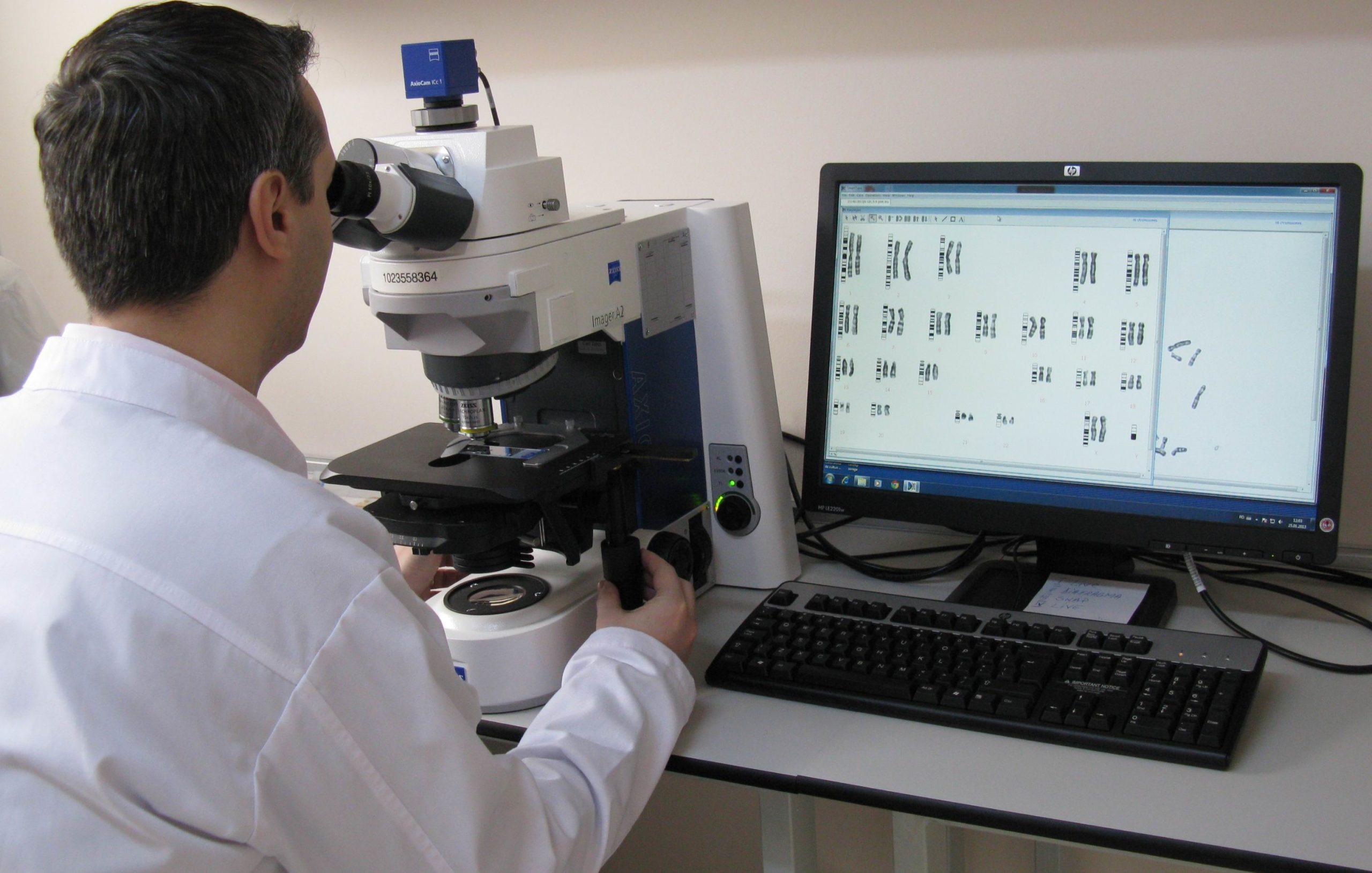citogenetica 2